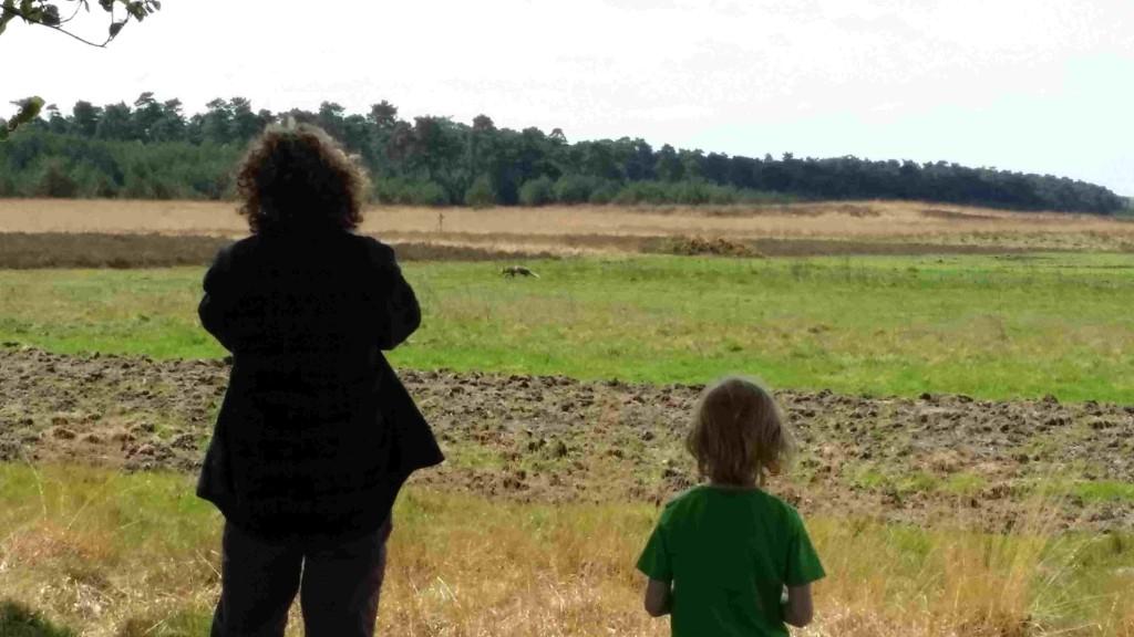 Samen wild spotten vinden de meeste kinderen geweldig.