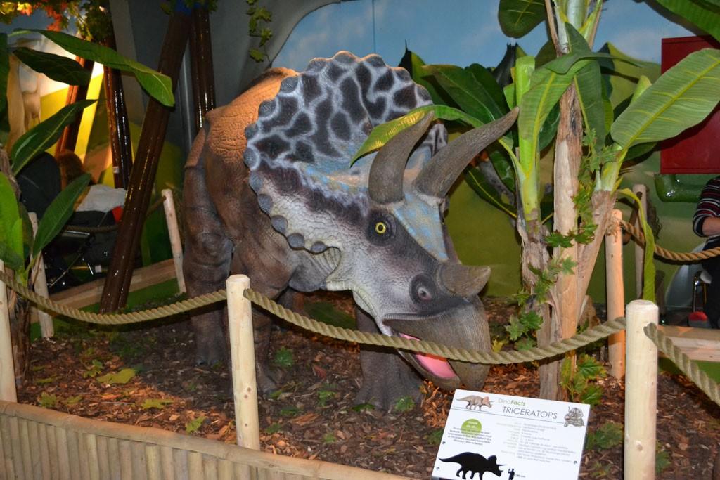 Het thema Dino's is overal in de binnenspeeltuin terug te vinden.