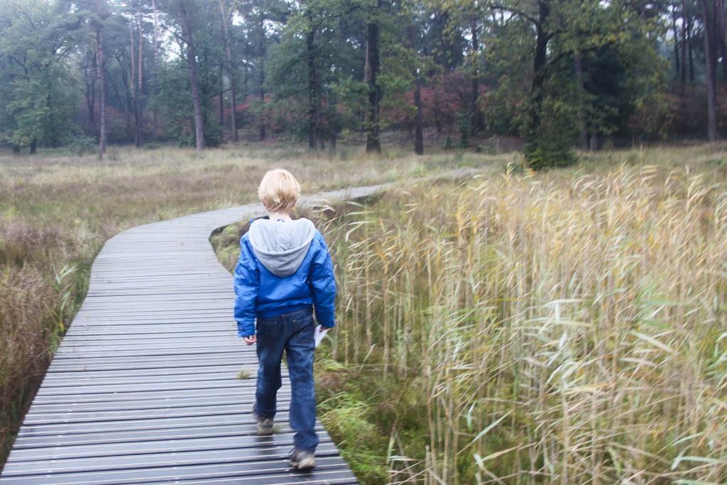 HogeVeluwe-wandelen-met-kinderen6-1