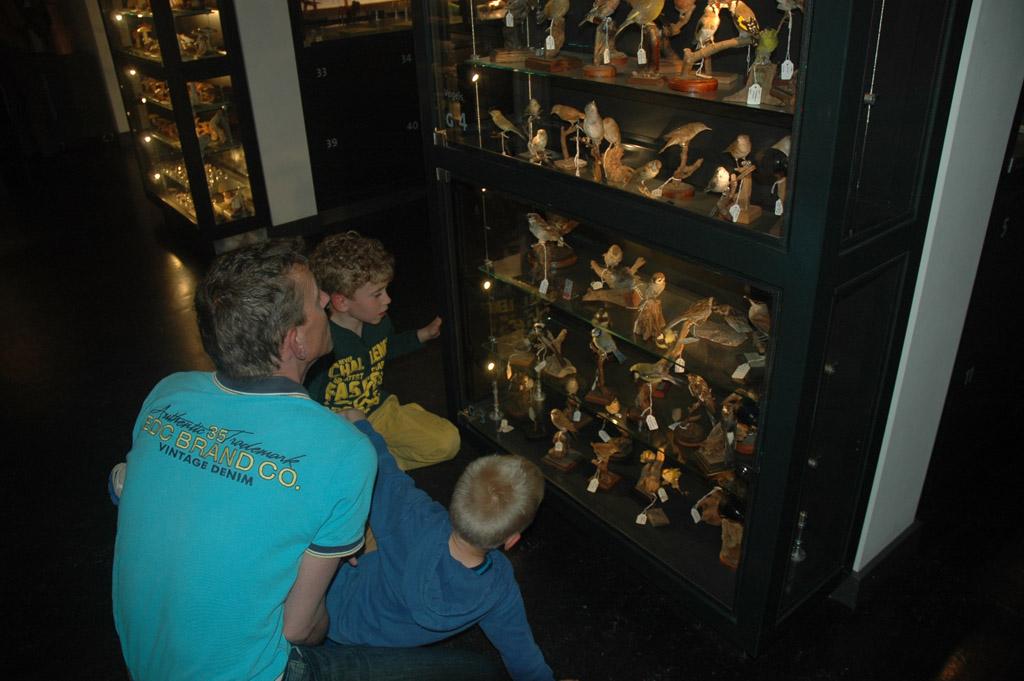Het Natuurmuseum in Tilburg.