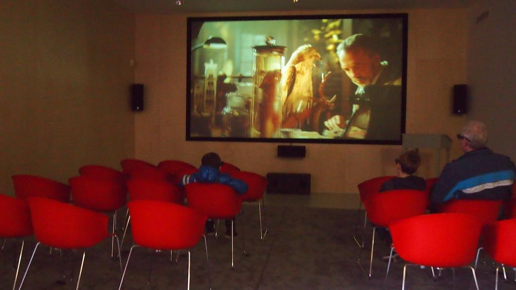 3D film kijken.