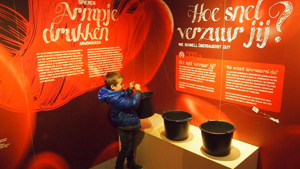 De tijdelijke tentoonstelling over het menselijke lichaam.