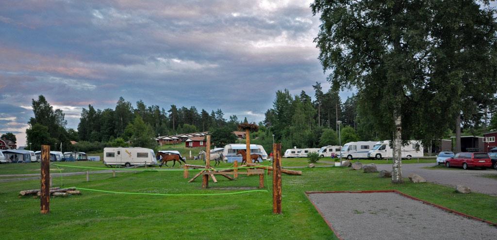 De camping ligt middenin het bos.