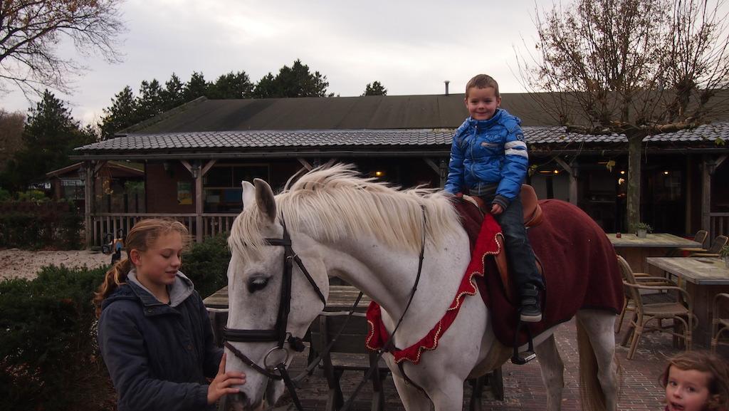 Op het paard van Sinterklaas.