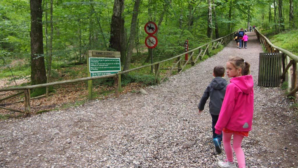 Het eerste stukje loop je door het bos.