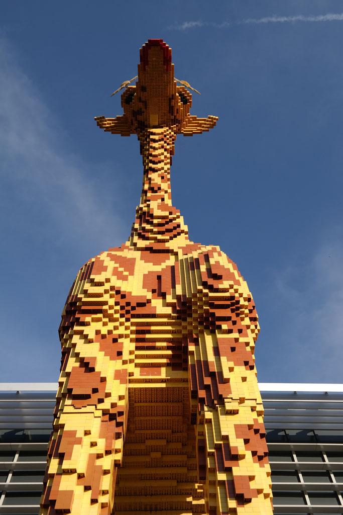 De giraffe.