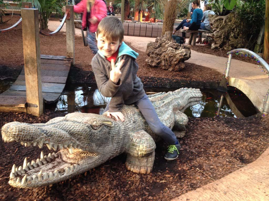 Rens temt de krokodil.