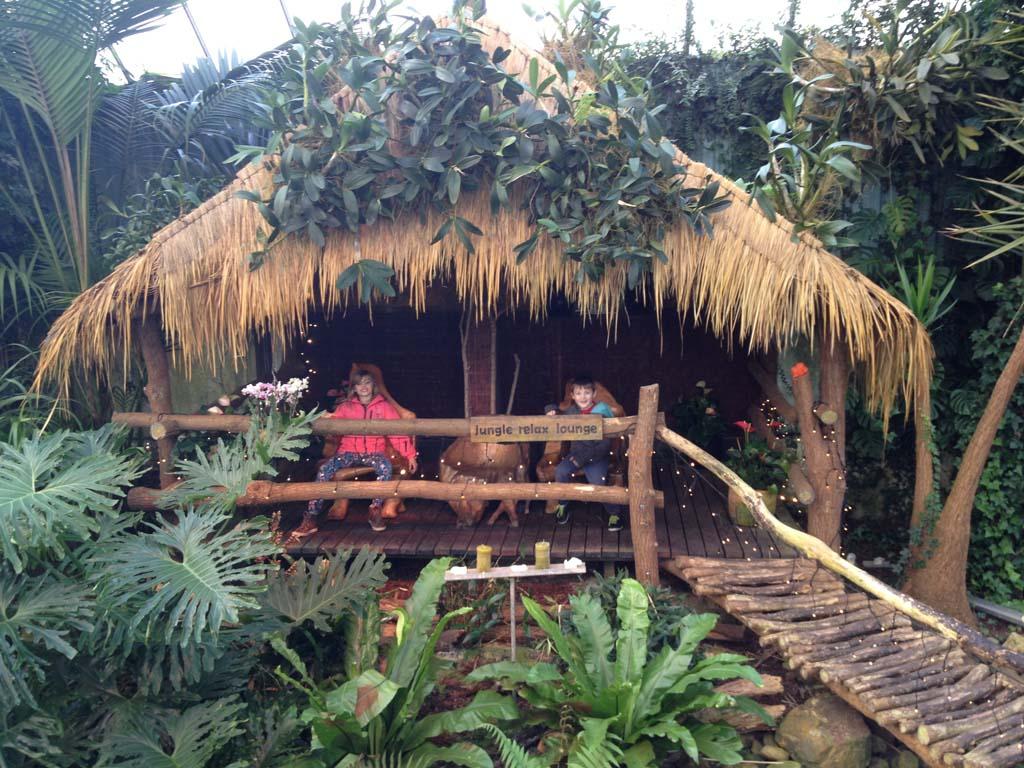 Leuke zitjes in de jungle.