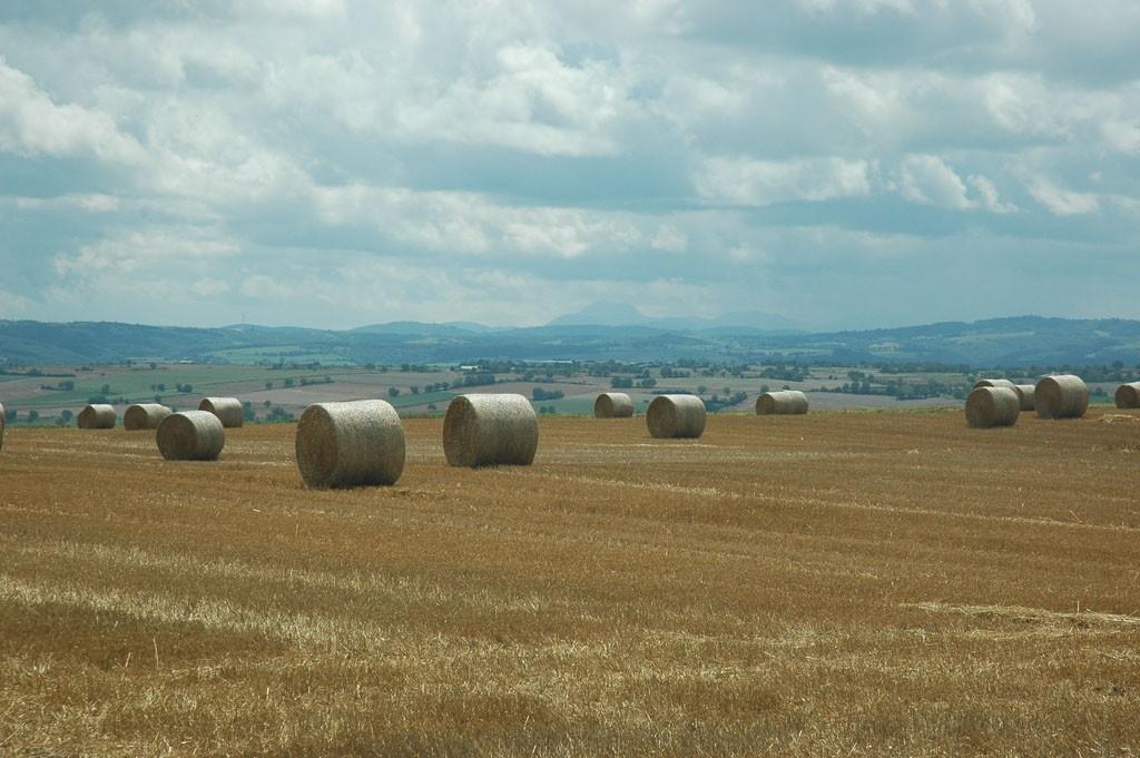 Typisch Frans landschap.