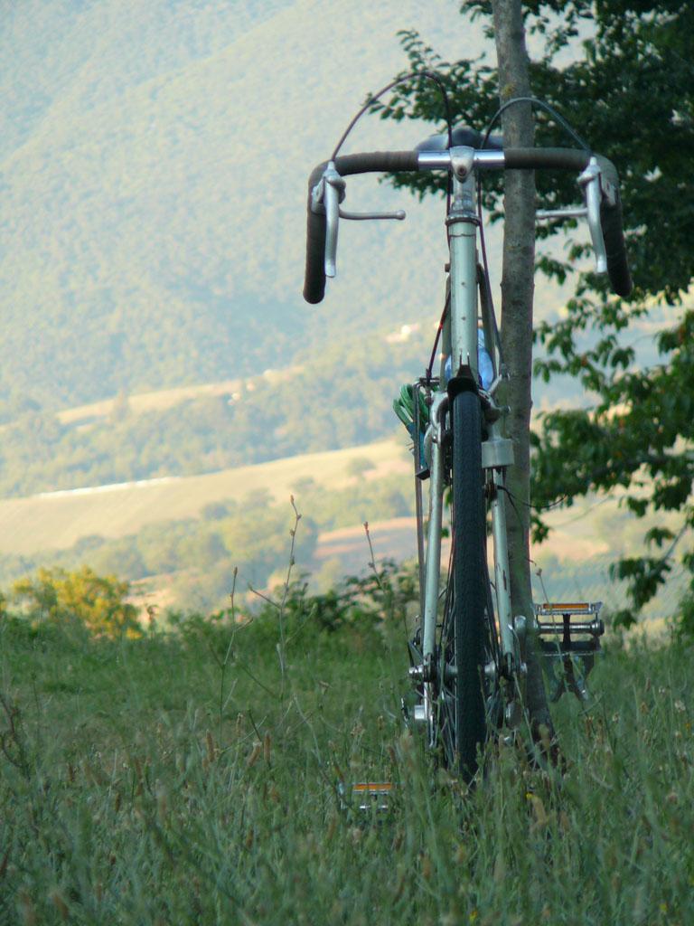 Uitzicht met fiets.