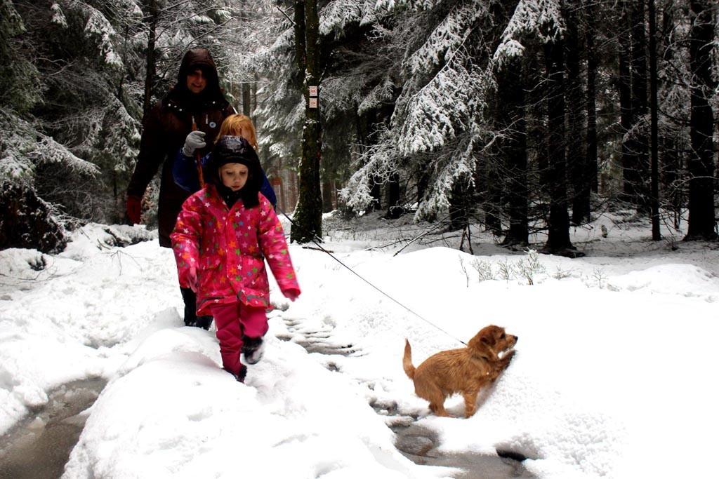 Wandelen door de sneeuw vlakbij het park.