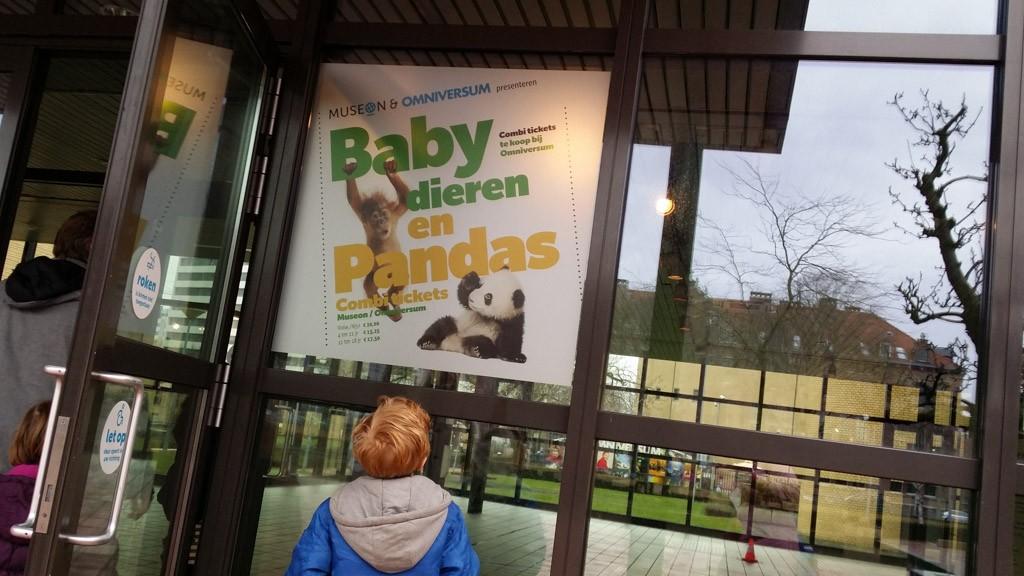 Wij komen voor de babydieren.