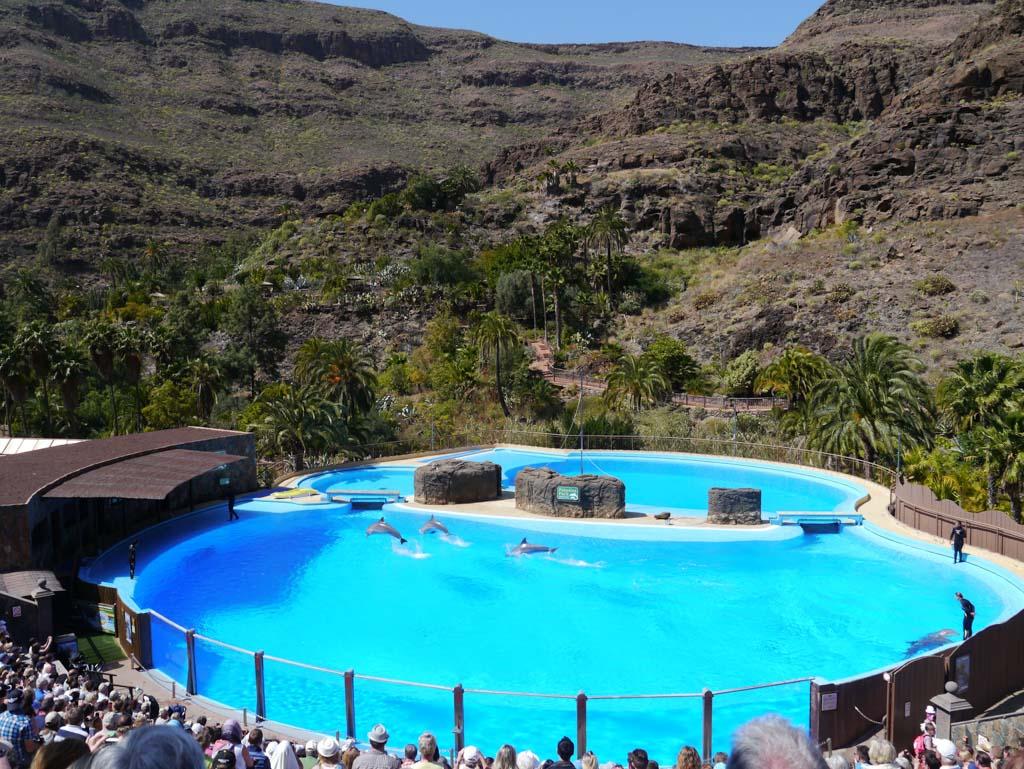 Dierenpark op Gran Canaria.