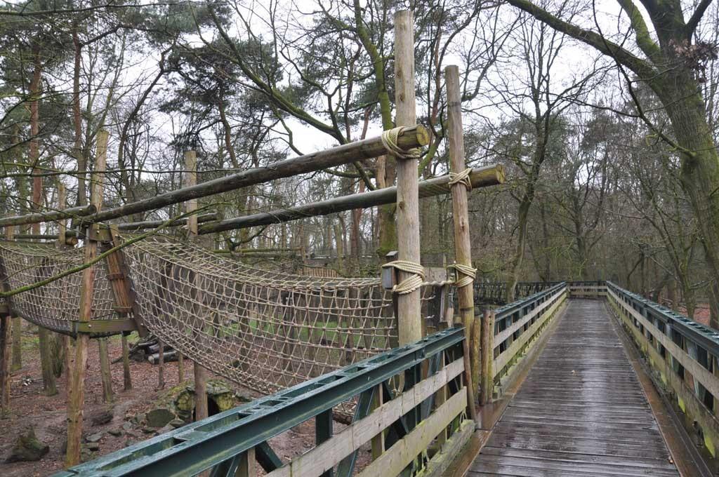 Op de loopbrug boven de beren.