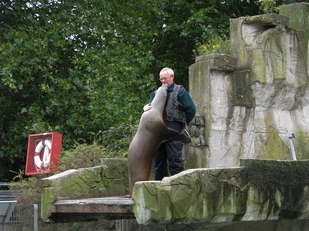 Het voeren van de zeeleeuwen is een extra attractie.