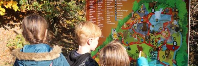 Is dierentuin Dierenrijk echt dé kinderdierentuin?