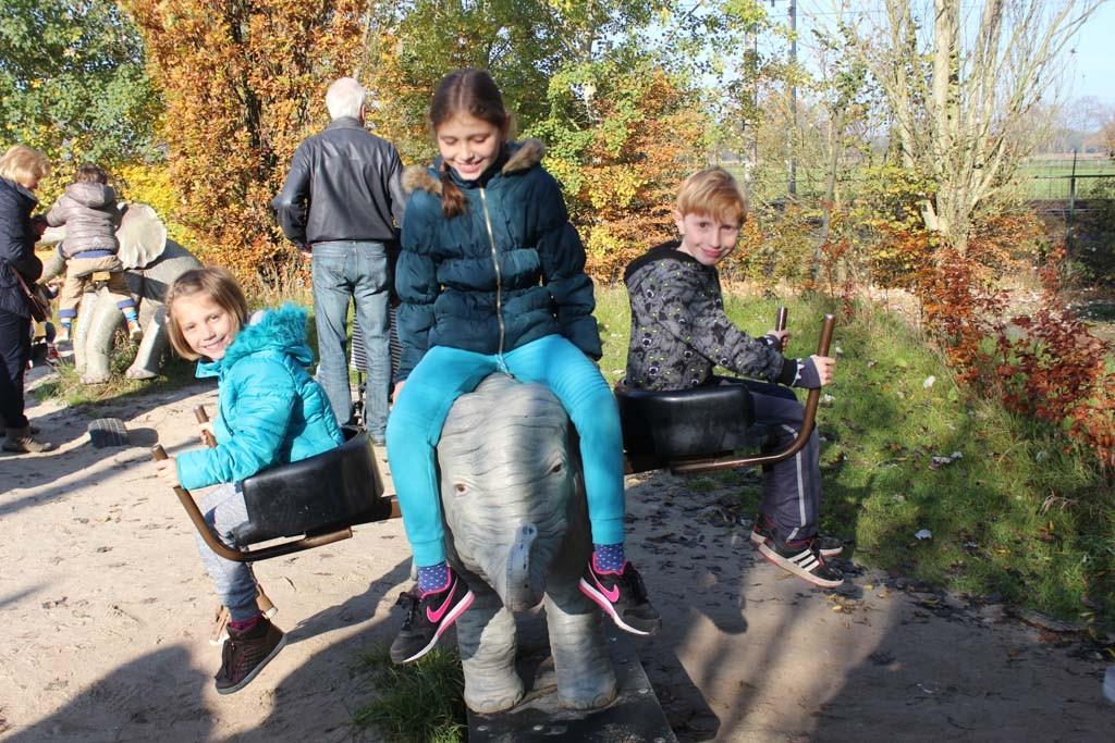 Genoeg te doen voor de kinderen naast natuurlijk het bekijken van de dieren.