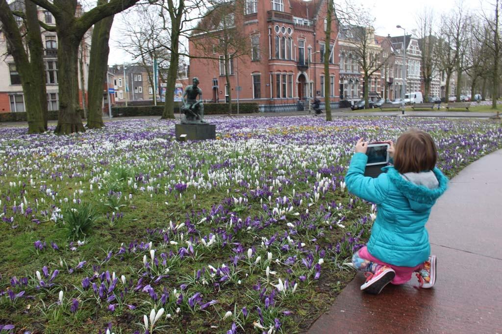 Lente in Groningen.