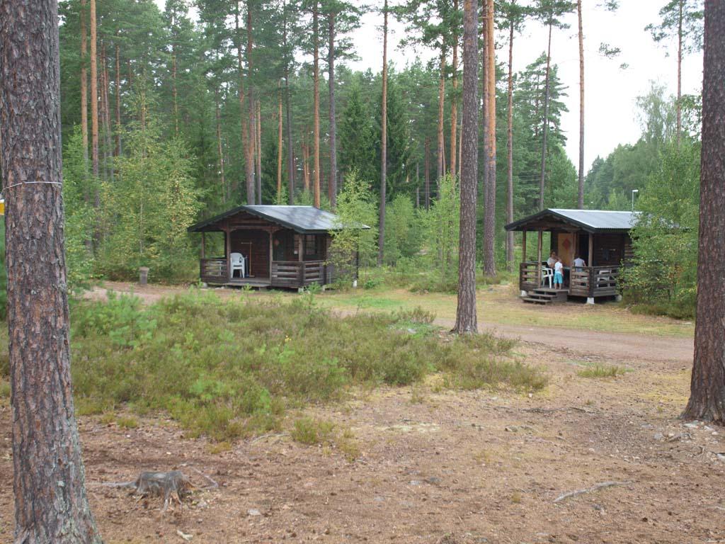 Bruine stuga's in het bos.
