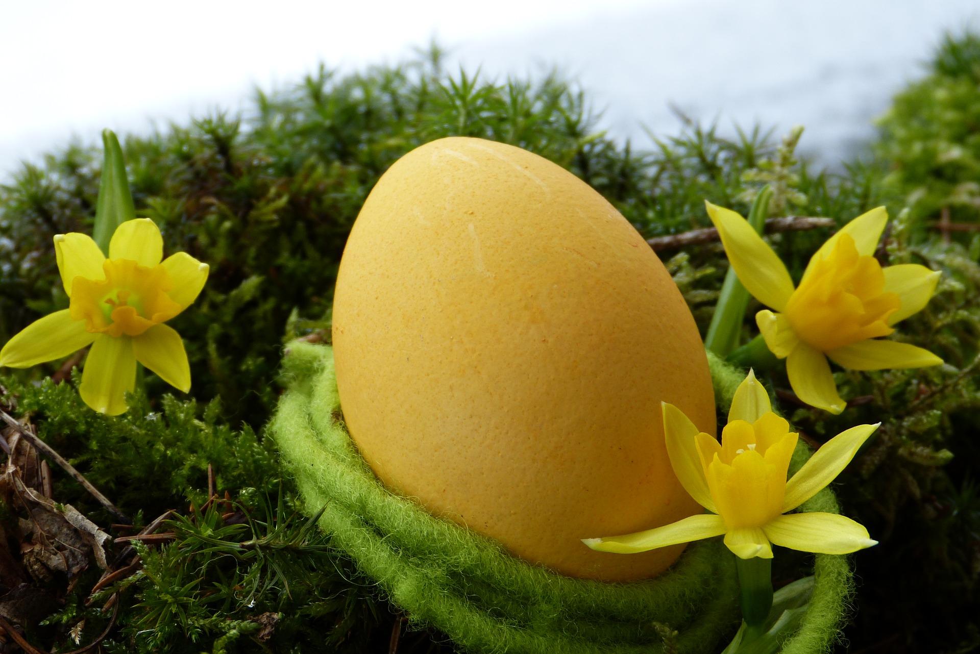 Eieren zoeken is toch wel een van de leukste uitjes met Pasen.