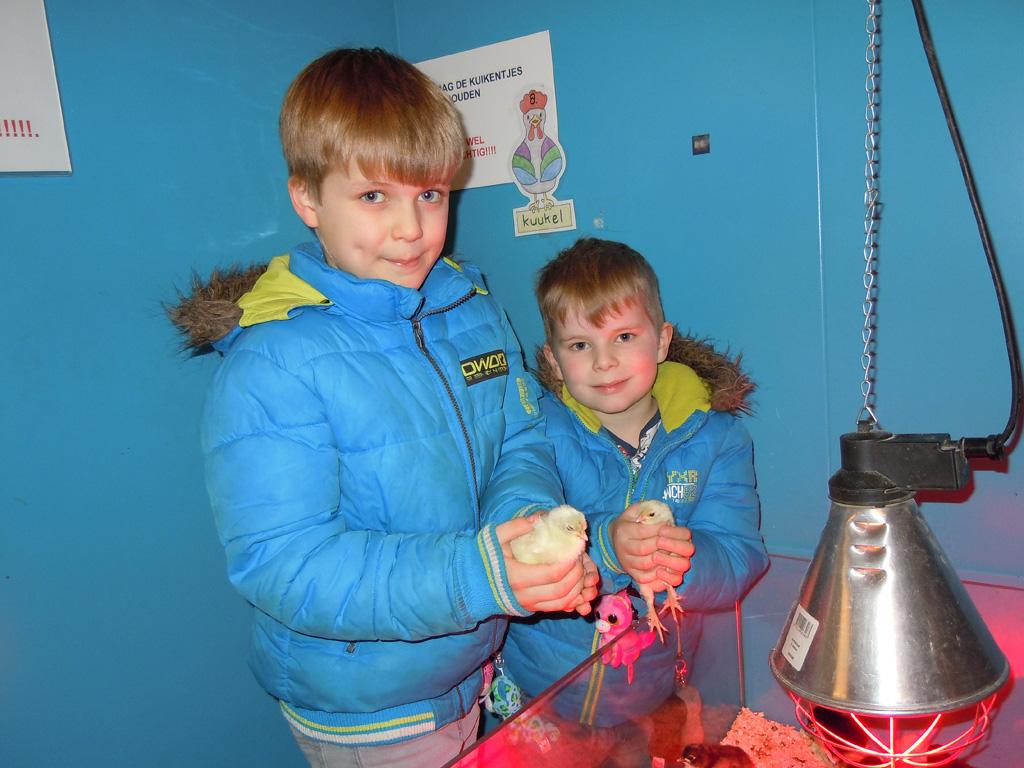 Het pluimveemuseum is toch wel favoriet bij blogger Lineke rond de Pasen.
