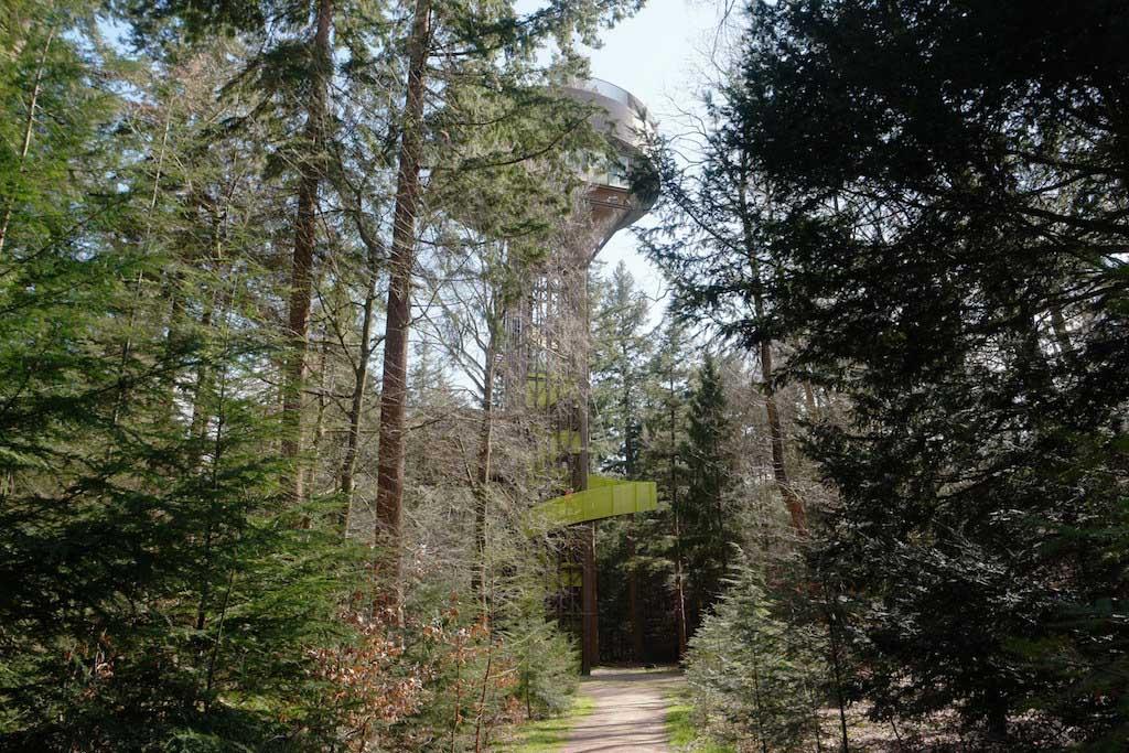 Als je goed oplet zie je de Bostoren tussen de bomen staan.