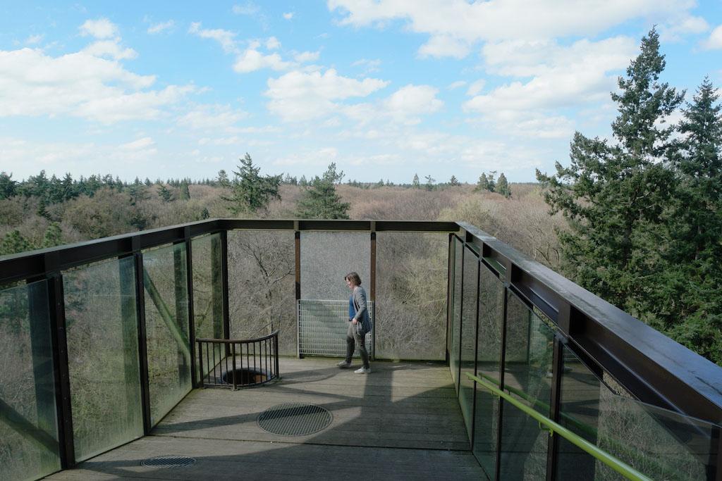 Op dit plateau komen de kinderen uit via het net. Ook via de gewone trap kan je daar komen.