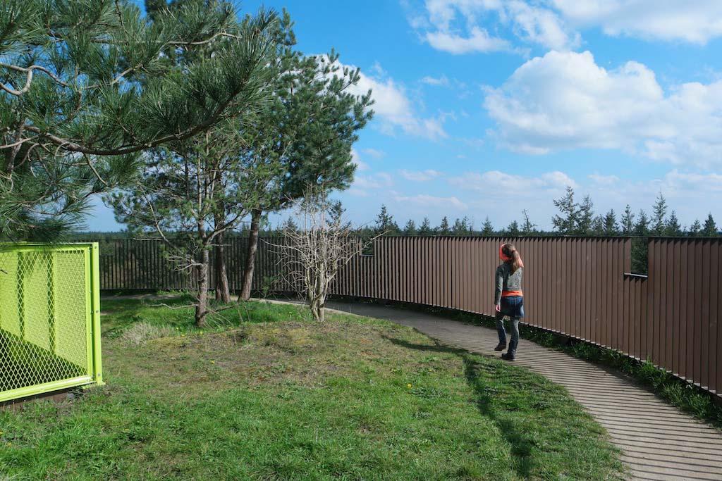 Bijzonder, zo'n plateau met bomen en ondertussen over de bomen van de Veluwe heen kunnen kijken.