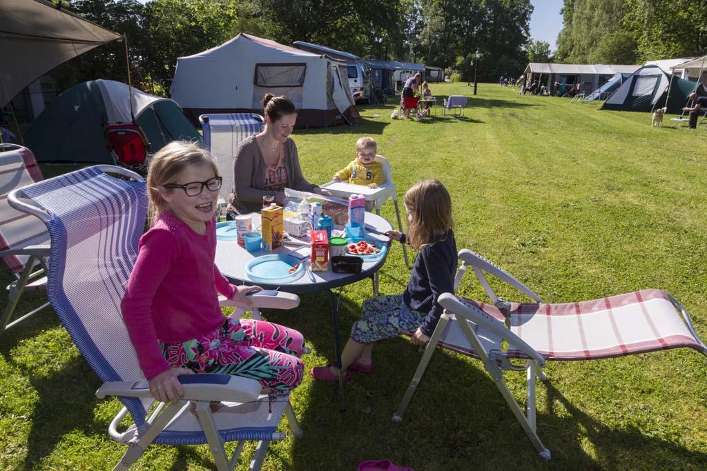 Camping 't Reestdal is een overzichtelijke camping waar iedereen welkom is.