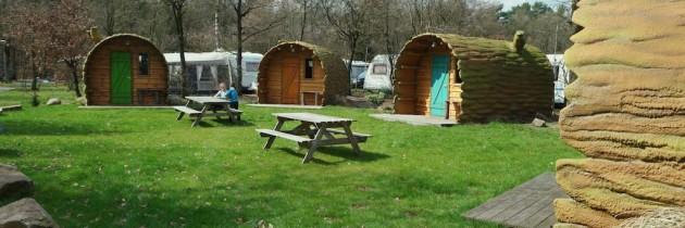 Bijzonder overnachten met kinderen: slapen in een boomstam op camping De Pampel