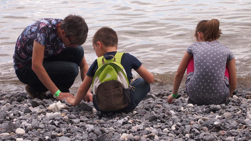 Fossielen zoeken bij Mons Klint.