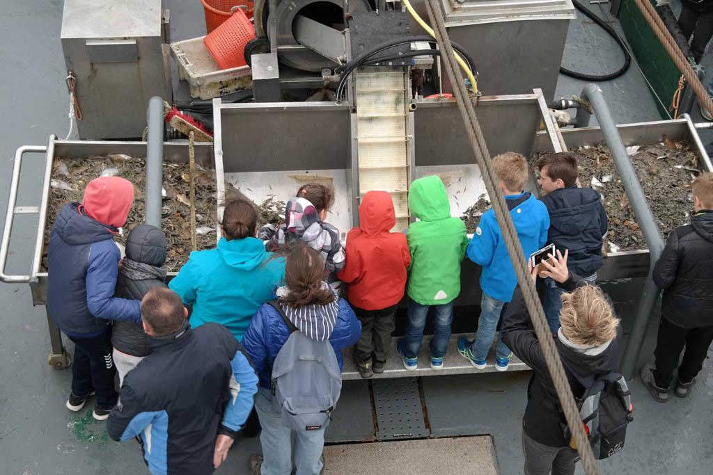 Kinderen mogen vooraan kijken bij het sorteren.