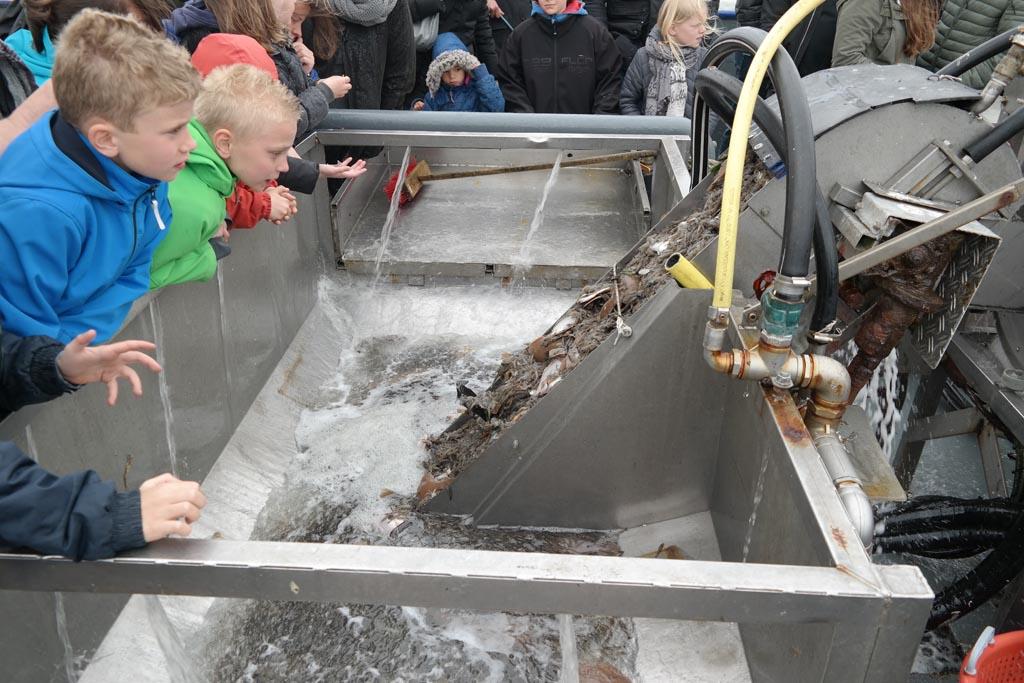 Goed kijken hoe de vis de sorteermachine in gaat.