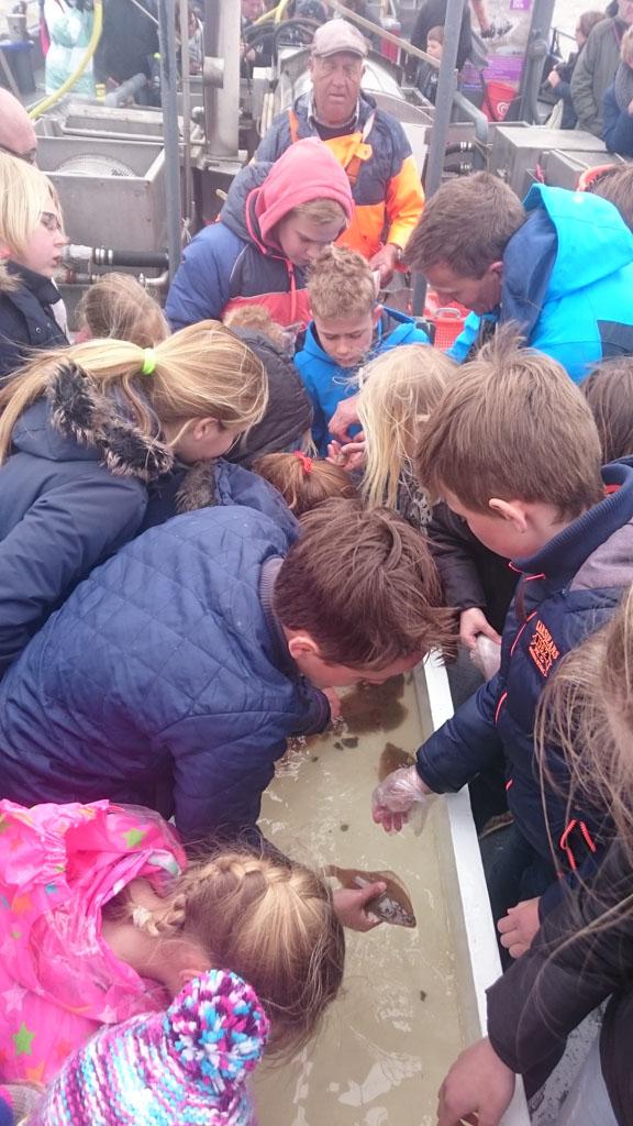 De kinderen mogen de vis pakken en teruggooien in zee.
