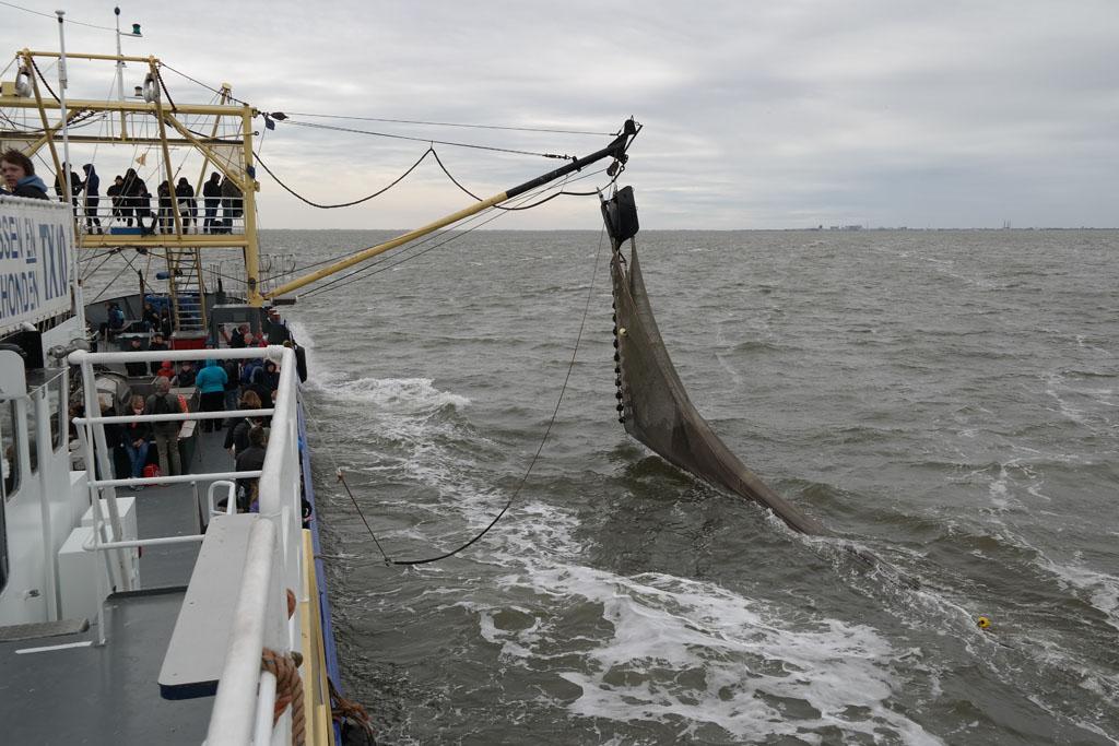 De netten gaan de zee in.