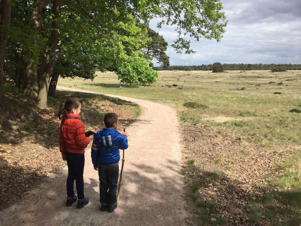 Vanuit het bos lopen we de vlakte op.