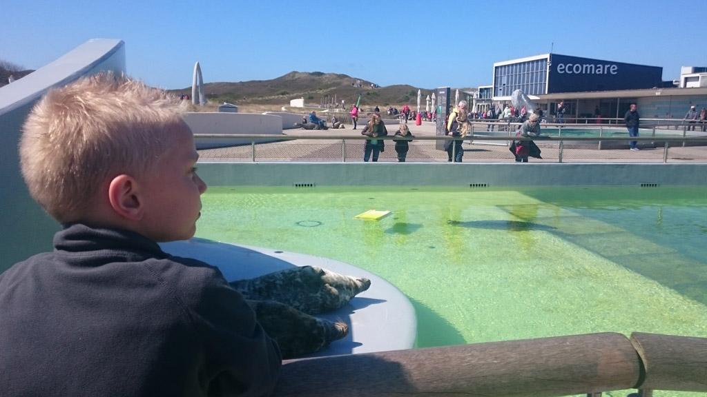 Een bezoek aan Ecomare mag niet ontbreken tijdens een vakantie op Texel met kinderen.