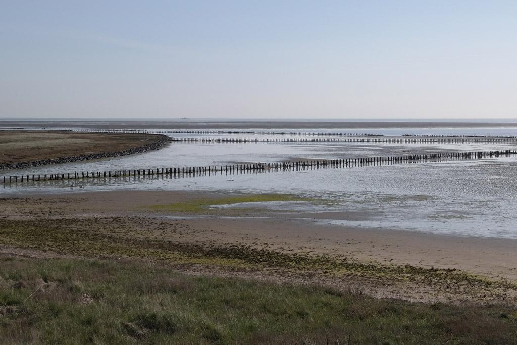 Natuurgebied De Schorren.