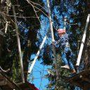 Zwarte Woud: in bomen klimmen bij kletterwald op de Feldberg, incl filmpje
