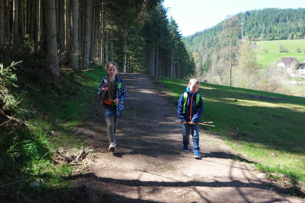 De route loopt langs het bos en het pad is ook met een kinderwagen te doen.