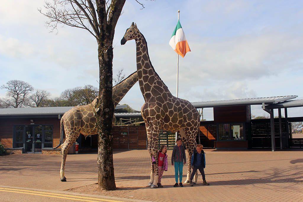 Ierland dierentuin - 1