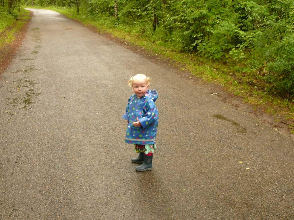 Wandelen door het bos bij Hoorn op een wisselvallige dag.