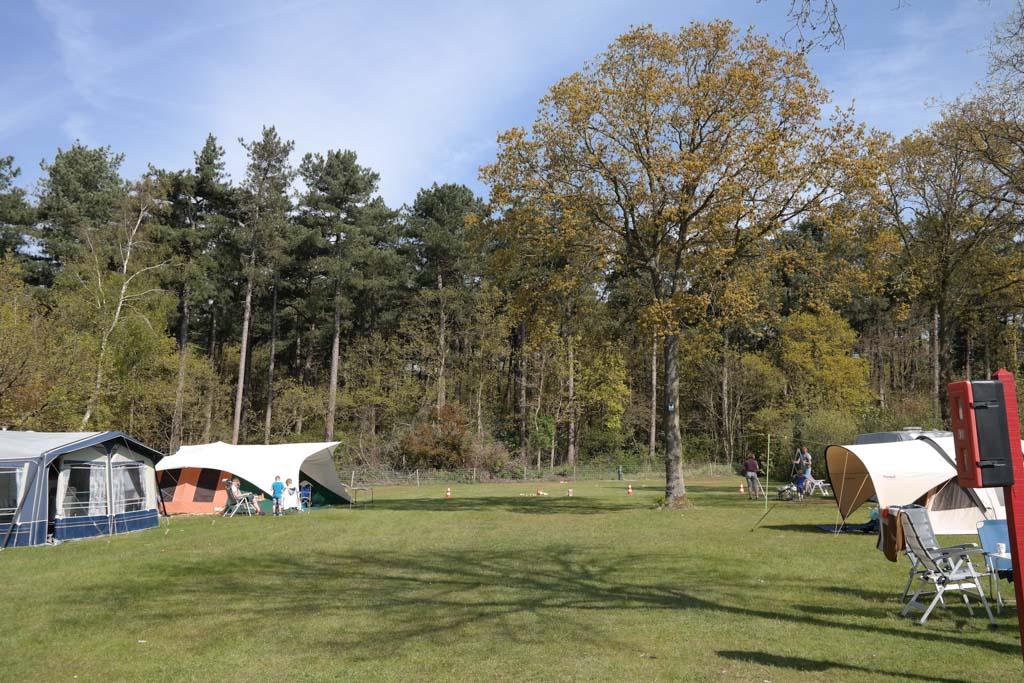 Camping 't Woutershok heeft grote kampeerplekken.
