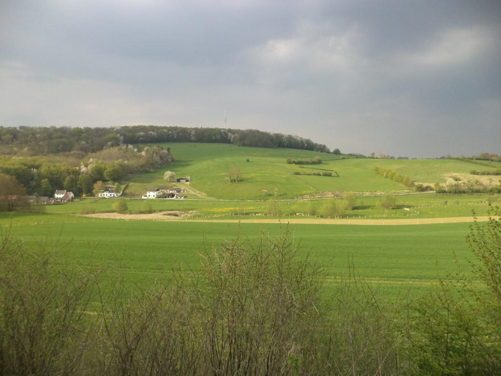 De treinreis gaat dwars door het heuvelachtige Limburgse landschap.