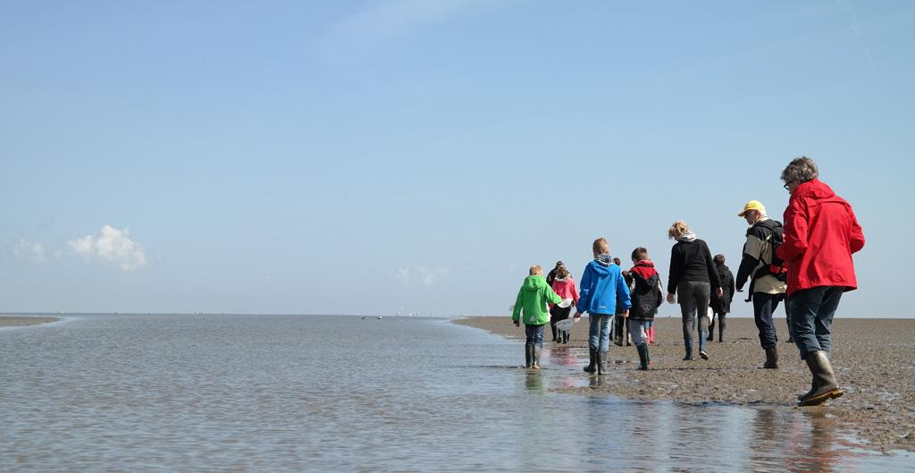 Struinen over De Schorren tijdens de natuurexcursie op Texel.