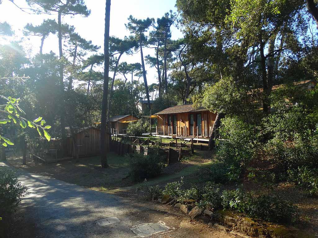 De bungalows op Paradu Tuscany EcoResort onder de hoge bomen.
