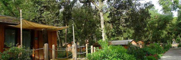 Paradù Tuscany EcoResort: kindvriendelijk vakantiepark aan de kust in Toscane