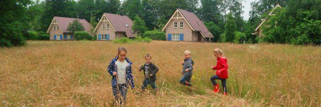 Villapark De Hondsrug, genieten van rust en natuur in Drenthe