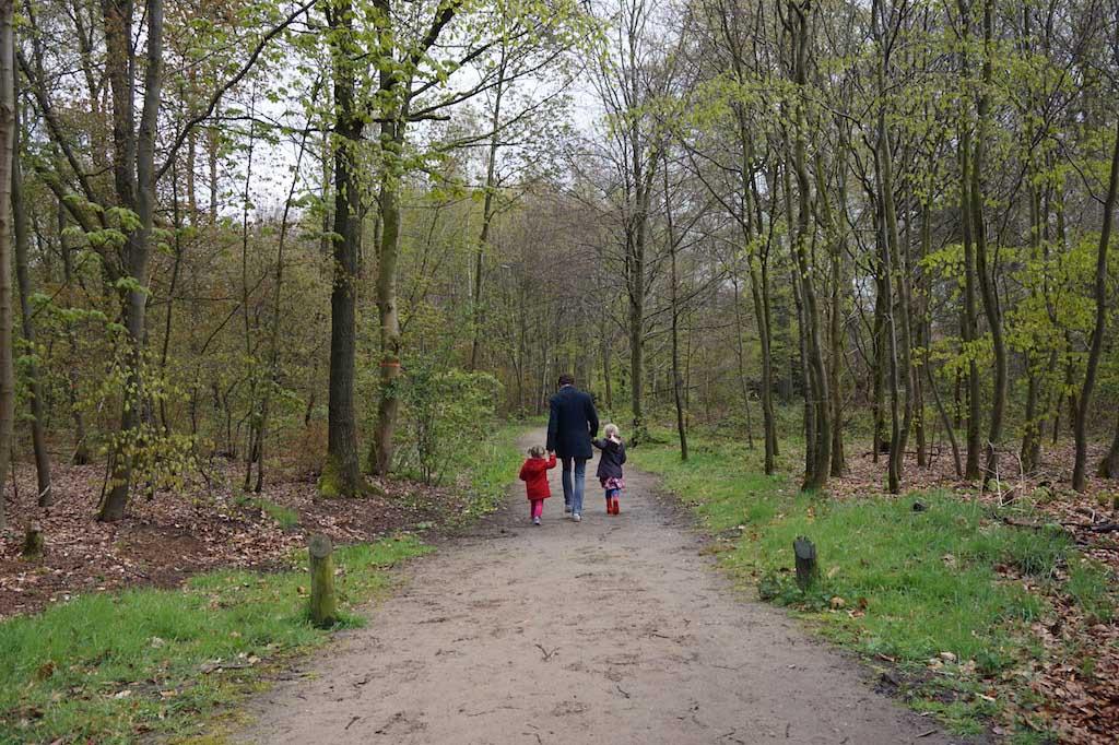 Onze wandeling bij Landgoed Nieuw Rande gaat over een bospad.
