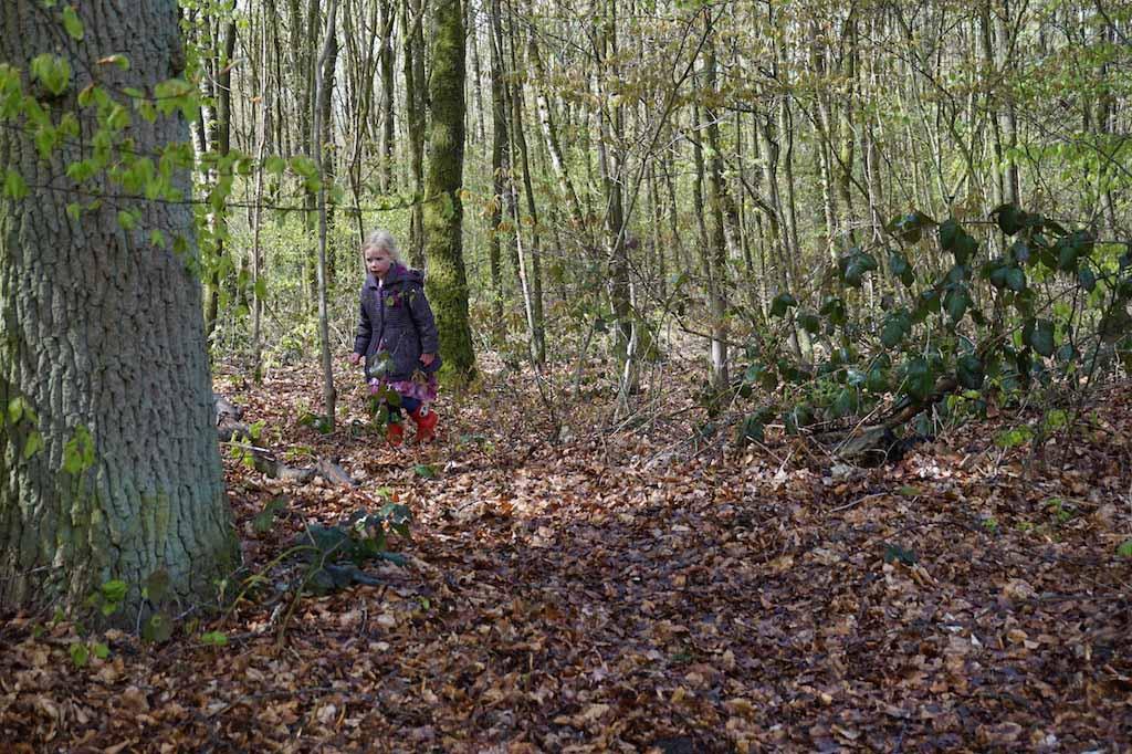 Verstoppertje in het bos spelen.